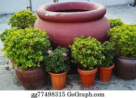 Flower-Pot - Flower Pot With Flowers