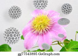 Clematis - Pollen - 3d Rendered Illustration