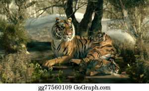 The-Family-Cat - Siberian Tiger Family, 3d Cg