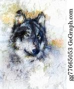 Huskies -  Illustration Portrait Of A Wolf, Crackle Background