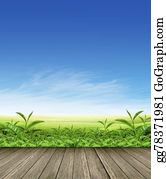 Plantation - Green Tea