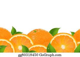 Orange-Border - Slices Of Orange Border