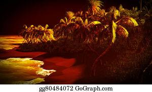 Cancun - Tropical Paradise At Night
