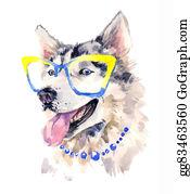 Huskies - Fashionable Coquettish Siberian Sheepdog