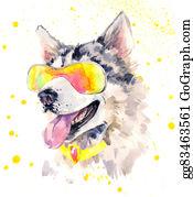 Huskies - Watercolor Siberian Husky Dog In Cool Sun Glasses