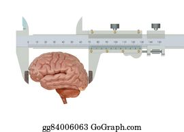 Millimeter - Vernier Caliper With Brain, Iq Concept
