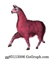 Alpaca - 3d Illustration Pink Lama On White