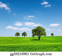 Green ecology landscape