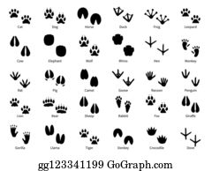 Pigs Feet Clip Art Royalty Free Gograph