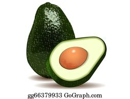 Free Avocado Pictures