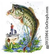 Marine Fish Collection Bass