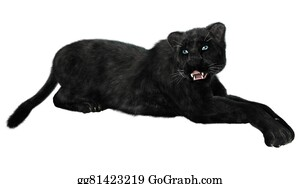 Drawing - Stalking black panther. Clipart Drawing ...
