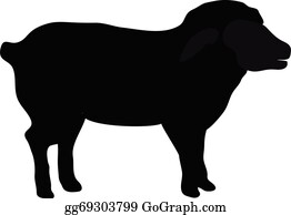 Sheep Silhouette Clip Art Royalty Free Gograph