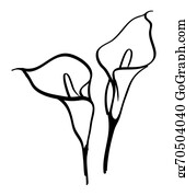 Background With White Callas Black Silhouettes Of Calla Lilies