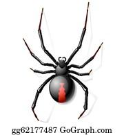 Black Widow Spider Clip Art Royalty Free Gograph