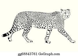 cheetah clip art royalty free gograph cheetah clip art royalty free gograph