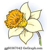 Daffodil Day Stock Illustrations – 1,239 Daffodil Day Stock Illustrations,  Vectors & Clipart - Dreamstime
