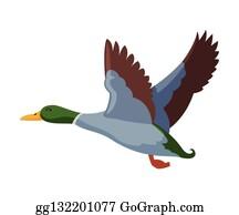 Canard Clip Art Royalty Free Gograph