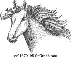 Free Mustang Horse Clip Art with No Background - ClipartKey