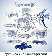 Arowana Fish Images, Stock Photos & Vectors   Shutterstock