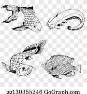 Arowana Stock Illustrations, Cliparts And Royalty Free Arowana Vectors
