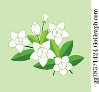 Transparent Clipart Image Jasmine Flower - Jasmine Flower Design Png , Free  Transparent Clipart - ClipartKey