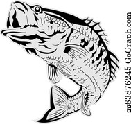 Pin by Bill Nagel on Upcoming Projects | Fish silhouette, Fishing decals,  Fish drawings