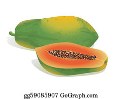 Clip Art Pictures Of Papaya