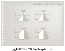 population stages