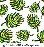 Monstera Stock Illustrations Royalty Free Gograph