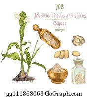 Pestle Mortar Fresh Herbs Clip Art - Royalty Free - GoGraph