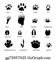 How to Improve Your Animal Track Identification Game | Animal tracks,  Snowshoe hare, Animal footprints
