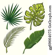 Tropical Leaves Clip Art Royalty Free Gograph Summer banner with 3d hawaiian leaf. tropical leaves clip art royalty free