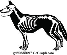 Clipart dogs halloween, Picture #2413805 clipart dogs halloween
