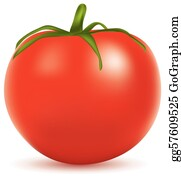 Tomatoes clipart vector, Tomatoes vector Transparent FREE for download on  WebStockReview 2020