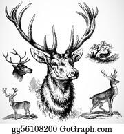 Deer buck. Clip art royalty free