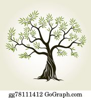 Olive Tree Clip Art Royalty Free Gograph