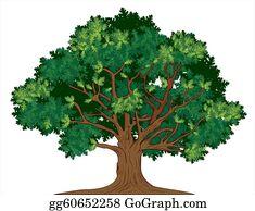 Oak Tree Clip Art Royalty Free Gograph