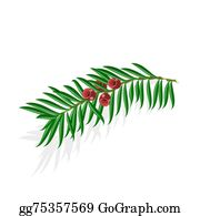 Yew Tree Clip Art Royalty Free Gograph You'll finally bring together your newfound skills by making your own cartoon people drawings in a way that suits. yew tree clip art royalty free gograph